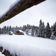 Затишна зима