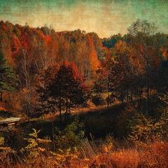 Осень в Креничах
