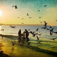 Рыбаки моют сети