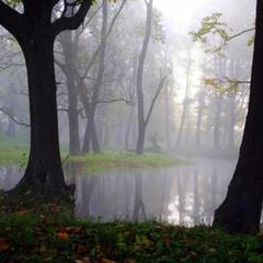 ... утренняя тишина