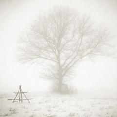 ... Туманне січня