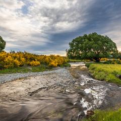 Новая Зеландия, Южный остров