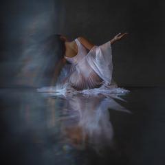 swan movements