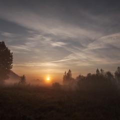 Жовтневий ранок