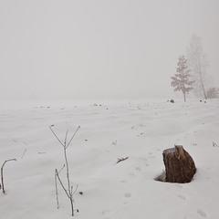 Замерзаючий туман-7. З іншого боку