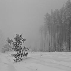 Замерзаючий туман - 7