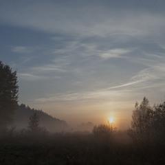 Сонце встає, а птах осені летить і летить