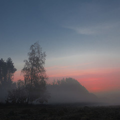 За туманом нічого не видно-2