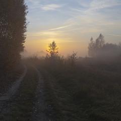За туманом нічого не видно