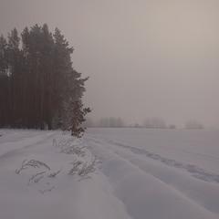 Замерзаючий туман-2