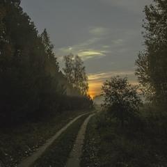 Дорога в осінній світанок