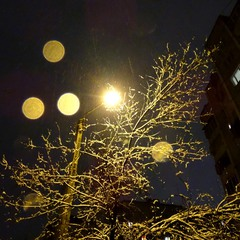 Зима, ліхтар, сніг