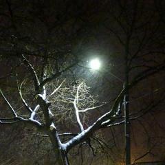Зимове марево ночі