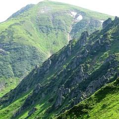 Зубаті гори