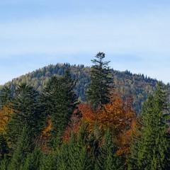 Гора і осінь