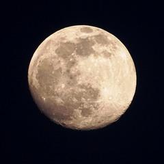 І Місяць став як кров...
