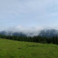 Ковдра туману