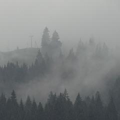 Туманний ранок