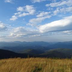 Трава, небо і гори