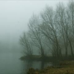 туманные острова