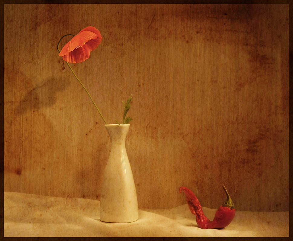 цветы картинки с диалогами один составляющих любых