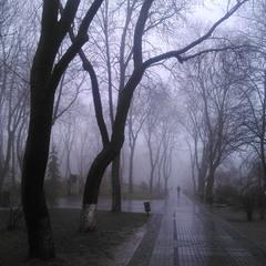In fog