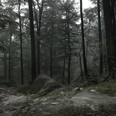 """Вокруг... или временной камнепад. Из серии """"собрания лиственных мыслей"""""""