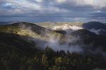 Теплий листопад у Горганах