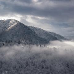 Тумани блукаючі