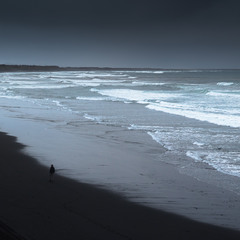 В раздумьях у океана