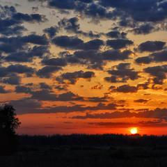 На закате солнечного дня...