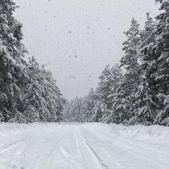 Тихо, тихо снег идёт...