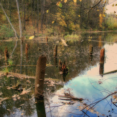 Тихая...тихая Осень...