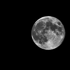 И даже в ту ночь, когда тебя не стало...луна всё ещё была полной...