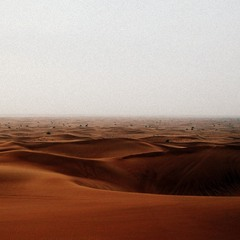 * Arabian Desert *