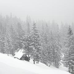 Домик под горой