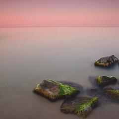 Sea stones #8