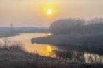 Туманное утро на пруду