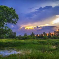 Летний закат на лугу