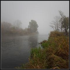 Осень... Утро... Туман...(2)