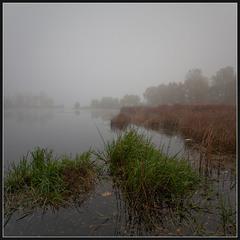 Осень... Утро... Туман...(3)
