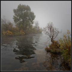 Осень... Утро... Туман...(4)