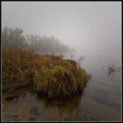 Осень... Утро... Туман...(5)