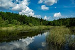 Озеро в лісі. Відкривається