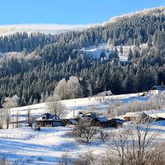 Зимно в Карпатах.