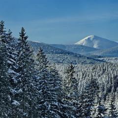 Зима гуляє по Карпатам