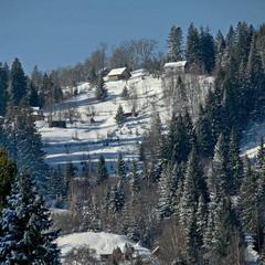 Зима в Карпатах.