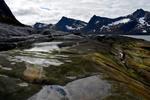 Норвежские ковры