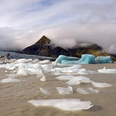 Люди и айсберги