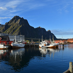 Горы, море, красота...